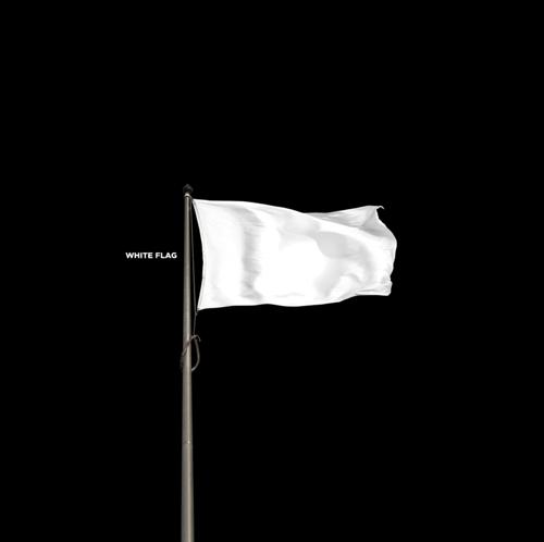 whiteflag_81