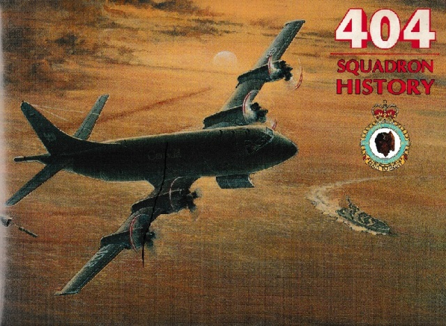 squadron404
